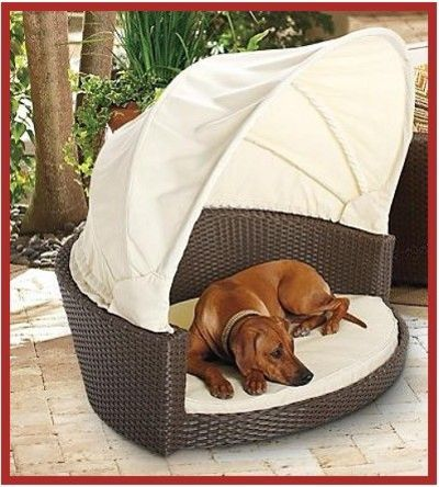 Outdoor canopy dog bed pet staycation interior design for Interior design dog bed