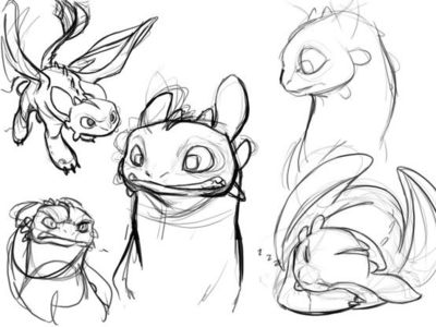 Toothless How To Train Your Dragon Character Design
