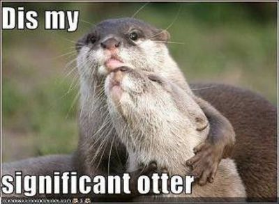 Dis my significant otter.