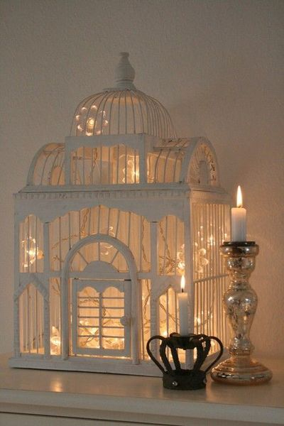 bird cage + christmas lights