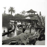 disneyland. vintage jungle cruise