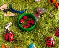 """bug"" sensory bin. Love the green grass made of rice:)"