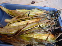 Smoked Corn On The Cob: This is such a delicious twist on your normal corn on the cob! The smokey flavor is just the right t...[read more at Food Frenzy]