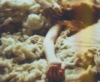 I want to bask in some sunlight and wool. Photographed by Lauren Treece.