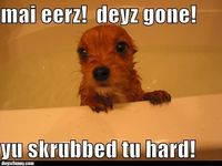 this is totes gracie when she has a bath.