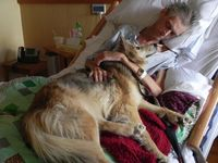 A homeless man's last wish was to see his dog one more time. Yurtie, a female dog used to live with Cedar Rapids 57 year old Kelvin Mc Clain in his car. Unfortunately, Kevin became ill with lung cancer. Hospice employees say it was the most touc...