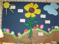 Bulletin board for plant unit.