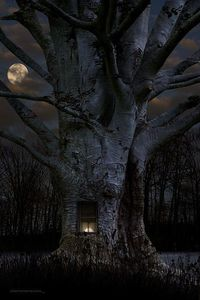 Once upon a midnight dreary...