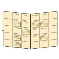 Divide the inside of a file folder into boxes that are slightly larger than small sticky notes. Write students' names in the boxes in alphabetical order, one name per box. Whenever you want to make a note about a student's progress, jot the in...