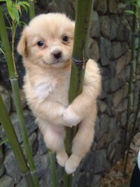 I'm hanging on for YOU!